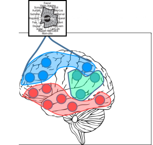 network fingerprint